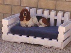 Canapé lit luxe en palette chien