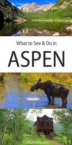What to see and do in Aspen, Colorado, USA States In America, North America, United States, Family Adventure, Adventure Travel, Travel With Kids, Family Travel, Travel Usa, Travel Tips