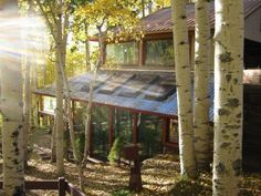 awesome passive/active solar house nestled in the woods.  Love the style and materials.