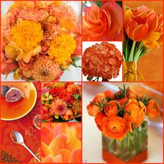 Orange, Poppy & Tangerine Mosaic