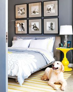 Dog decor in the home. Pictures of all the dogs in your life :). Fun for the office or perhaps Scout's future room.