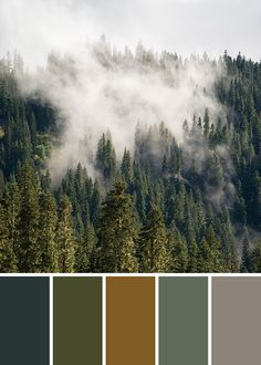 Green Color Scheme, Bedroom Bathroom Color Palette Inspiration, Mountain Forest Wall Art Print – Gardening for beginners and gardening ideas tips kids Bedroom Colour Schemes Green, Color Schemes Colour Palettes, Green Colour Palette, Bedroom Green, Green Colors, Nature Color Palette, Mauve Color, Gray Color, Bedroom Colors