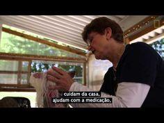 Mulher abre mão da vida pessoal para fundar um asilo de cachorros abandonados pelos donos