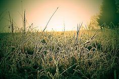 sun and ... II