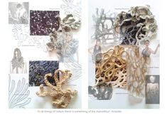 Fashion Sketchbook colour, texture and pattern interpretations of natural form for knitwear design