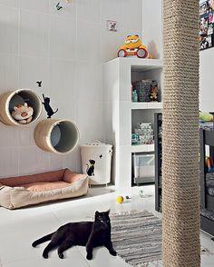 A gata Penélope se esparrama no quarto claro e ventilado, que tem arranhadores cilíndricos, fixados na parede, e nichos organizadores feitos de alvenaria
