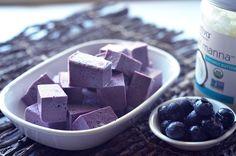 Coconut Blueberry Jigglers kitchen.nutiva.com Organic Dairy Free