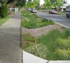 A typical residential streetscape within the Barton Basin after the green stormwater infrastructure retrofit with raingardens, street trees and swales added between the sidewalk and curb to help relieve pressure on the piped sewer system. Water Barrel, Rain Barrel, Landscape Architecture, Landscape Design, Seamless Gutters, Street Trees, Garden Compost, Green Street, Water Management