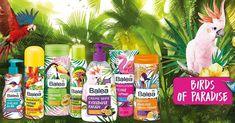 9 total geniale dm-Produkte, die keiner kennt | erdbeerlounge.de