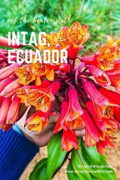 Ecotourism and volunteering in Intag, Ecuador | off the beaten path