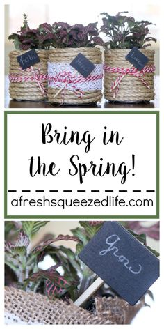 BRING IN THE SPRING