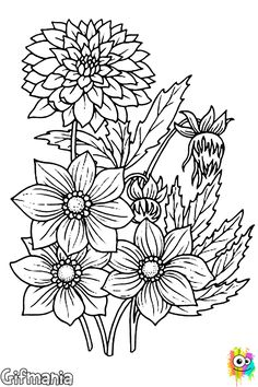 ramo de flores secas Coloring Sheets, Coloring Books, Coloring Pages, World Of Color, Machine Embroidery Designs, Outline, Mandala, Drawings, Study Help
