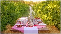 Vineyard Valentines   Cherrycino Tablescapes, Vineyard, Wedding Inspiration, Barn, Valentines, Events, Table Decorations, Beauty, Ideas