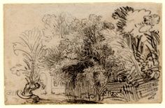 Rembrandt, A clump of trees in a fenced enclosure. c.1645 Black chalk