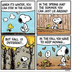 When it's winter you can stay in the house. In the spring and the summer you can just lie around. But fall is different... In the fall you have to keep moving...