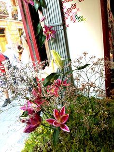 #jardín #garden efímero #lilium