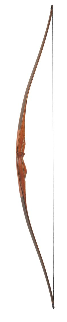 A long or recurve bow.  Not a Compound Bow.  I remember enjoying archery when I was in scouts.
