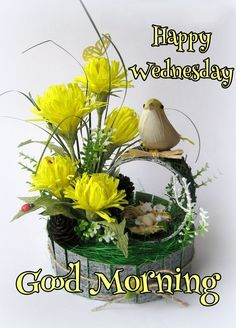 Wednesday Morning Greetings, Wednesday Morning Quotes, Monday Morning Coffee, Wednesday Hump Day, Good Morning Sister, Good Morning Happy, Good Morning Flowers, Beautiful Morning, Good Morning Scripture