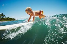 My kids will be surfers :p