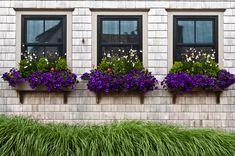 Window Planter Boxes With Purple Flowers : Decorative Outdoor Flower Window Planter Box Indoor Plants Diy, Outdoor Shelves, Windows Exterior, Window Box Flowers, Exterior Design, Flower Window, Modern Windows, Modern Window Treatments, Window Shelf For Plants