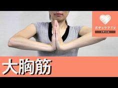 Sponsored Link 垂れたバストの戻し方は?垂れたバストを治すにはヨガや筋トレで胸筋の鍛えると効果的で胸を戻す事ができます。 また、年齢を重ねても胸が垂れないようにするには、NG垂れ乳習慣の改善点など1日1分で垂れた胸を戻す方法を...
