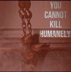 Pro vegan: you cannot kill humanely.