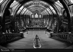 Beautiful Black And White Photo Gallery
