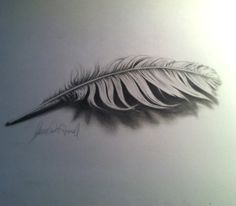 3D feather with video of process by XeNzO.deviantart.com on @deviantART