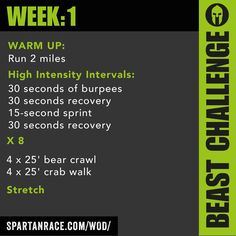 A Spartan race workout!! Possibly Tough Mudder training too?