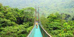 Selvatura suspension bridge: Monteverde, Costa Rica
