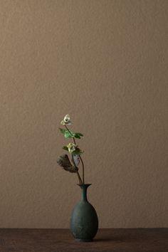 2012年4月1日(日)    私にとって春の花の象徴です。やさしく、気品ある女神の姿。   花=雪割一花(ユキワリイチゲ)   器=青銅王子形水瓶(六朝時代)