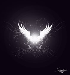 Images For > White Angel Wings Wallpaper White Angel Wings, Dark Wings, Angels Among Us, Angels And Demons, Angel Wings Pictures, Wings Wallpaper, I Believe In Angels, Wings Design, Angel Art