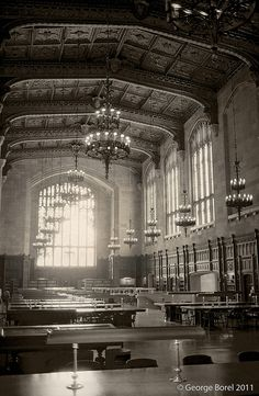 University of Michigan Law Library Reading Room, aka, Harry Potter.