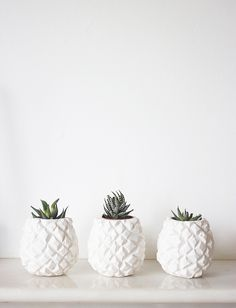 Pineapple Pots.
