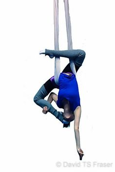 Arts And Crafts Michaels Aerial Hammock, Aerial Hoop, Aerial Arts, Aerial Acrobatics, Aerial Dance, Aerial Silks, Yoga Inspiration, Fitness Inspiration, Air Yoga