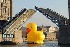 Un gigante pato de goma flotando por las aguas del río Támesis sorprendió la mañana del pasado 11 de diciembre a los habitantes y turistas de Londres.