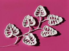 Crochet Flower Patterns Irish Crochet Leaves Free Pattern - Here are links to 18 free crochet leaf patterns for spring, autumn and year-round. Traditional crochet leaves, as well as funkier designs, are included. Crochet Puff Flower, Crochet Lace Edging, Crochet Leaves, Freeform Crochet, Crochet Flowers, Crochet Leaf Free Pattern, Irish Crochet Patterns, Knitting Patterns, Irish Crochet Tutorial