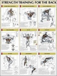 Back Strength Training Poster