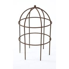 Lobster Pot by Muntons Traditional Plant Supports, the perfect gift for Explore more unique gifts in our curated marketplace. Potted Plants, Garden Plants, Garden Plant Supports, Bird Aviary, Herbaceous Perennials, Tubular Steel, Garden Structures, Garden Ornaments, Clematis