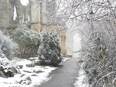 bewitchingbritain: This is the ruins of the Abbey of St Mary in York, founded in at one time the richest abbey in northern England. Until King Henry VIII dissolved all the monasteries and it was closed and mostly destroyed, that is. I Love Winter, Winter Snow, Winter White, Winter Walk, Winter Magic, The Places Youll Go, Places To See, Northern England, Winter Beauty