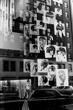Untitled (salon window)