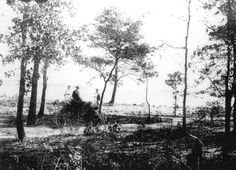 Florida Memory - View across Valparaiso Bay in front of the Martin home - Valparaiso, Florida    1920