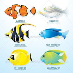 Google Image Result for http://3.s3.envato.com/files/13536299/Tropic%2520Fish%25201.JPG