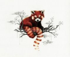 Red Panda - Whimsical art by Courtney Brims Red Panda Cute, Panda Love, Panda Painting, Painting Art, Petit Tattoo, Panda Art, Whimsical Art, Beautiful Images, Art Drawings