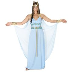 Amazon.com: Dream Weavers Costumers Egyptian Goddess Adult Costume M: Clothing