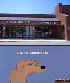 OMG.... carne de perro jaja