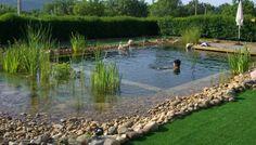 BIOPISCINAS. Su método de construcción recrea los ecosistemas naturales. (Foto: Piscinas Ecológicas).