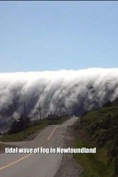 Newfoundland fog ~ click on this link to see the video http://www.dailymail.co.uk/news/article-2401129/Breathtaking-tidal-wave-fog-caught-camera-rolling-Newfoundland.html