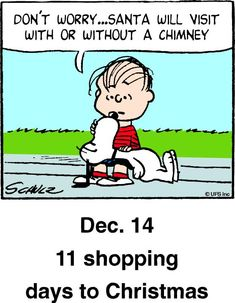 Christmas countdown panel Days To Christmas, Peanuts Christmas, Charlie Brown Christmas, Charlie Brown And Snoopy, Christmas Quotes, Christmas Humor, Christmas Countdown, Snoopy Pictures, Cute Cartoon Pictures