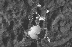 SETI – Wikipédia, a enciclopédia livre